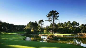 camping proche golf landes