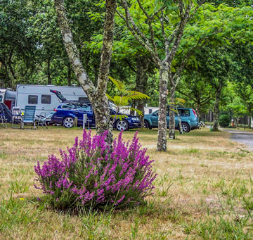 location-camping-car-camping-landes