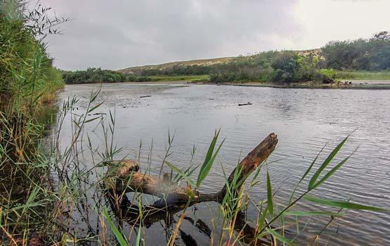 camping proche étang malloueyre
